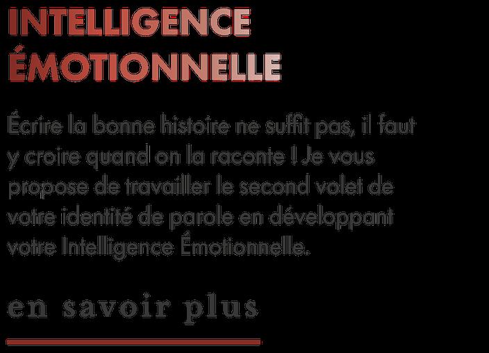 texte descriptif du service d'intelligence émotionnelle
